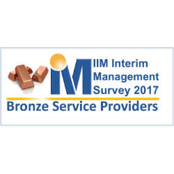 interim management bronze provider